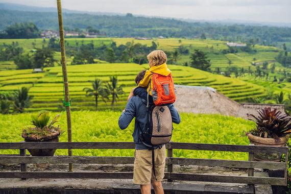 Shutterstock nuotr./Jatiluwih ryžių terasos, Balio sala, Indonezija