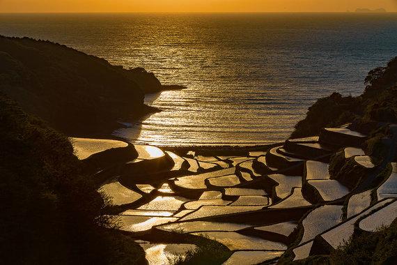 Shutterstock nuotr./Hamanouros ryžių terasos, Japonija
