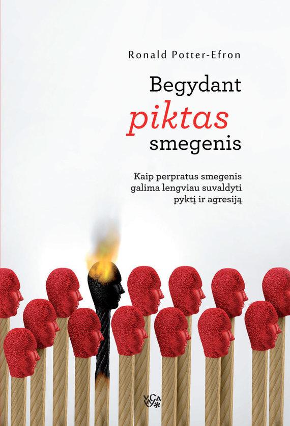 "Leidyklos VAGA nuotr./Ronaldo Potterio-Efrono knyga ""Begydant piktas smegenis"""