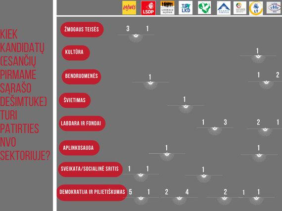 """""""Atviros Lietuvos fondo"""" nuotr./Kas yra nevyriausybinė organizacija?"""