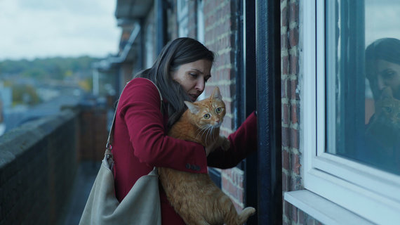 """Kadras iš filmo/""""Katė sienoje"""""""