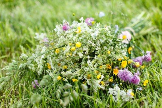 Fotolia nuotr./Vasariška pievų gėlių puokštė