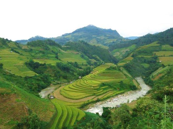 Gabrielės Štaraitės/ Travel Planet nuotr./Ryžių terasos Mu Cang Chai regione Vietname