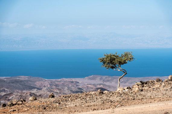 """""""Shutterstock"""" nuotr./Indijos vandenynui priklausanti Tadžuros įlanka, Džibutis, Afrika"""