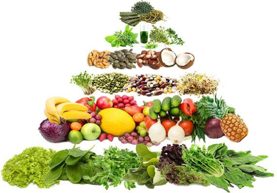 Fotolia nuotr./Gyvo maisto piramidė