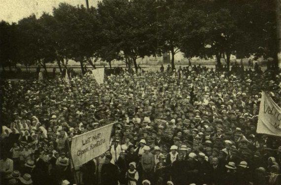 epaveldas.lt nuotr. /Protesto akcija prieš Hymanso projektą