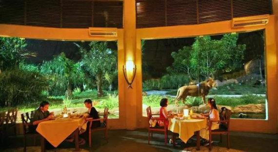 Bali.mehthesheep.com nuotr./Vakarienė su liūtais