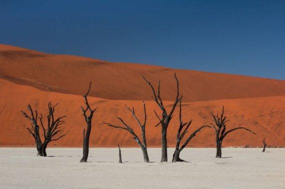 Fotolia nuotr./Namibija