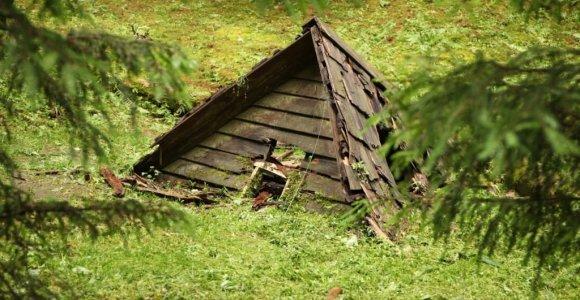 Pamatyk Lietuvoje: atradimai gamtoje aplink Trakus ir Vilnių
