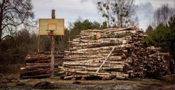 Aplinkos ministerija vėl siūlo medienos supirkimo taisykles, dėl kurių perspėjo STT