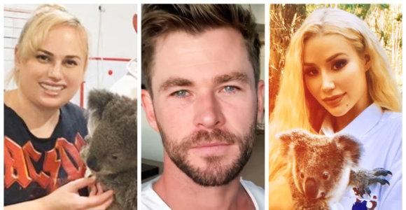 Užsienio žvaigždžių reakcija į gaisrus Australijoje: liepsnas gesina milijoninėmis aukomis