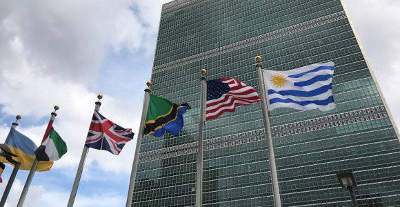 Į JT Saugumo Tarybą išrinktos Indija, Meksika, Norvegija ir Airija