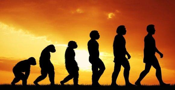 Panašu, kad, be žmonių, Visatoje protingų būtybių nėra