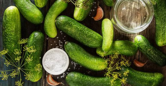 10 priežasčių valgyti agurkus: padeda palaikyti sveiką svorį, normalų kraujospūdį