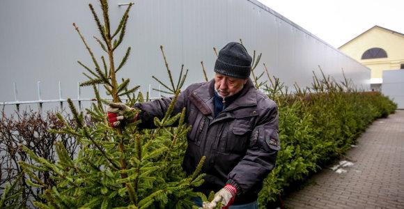 Kalėdų eglei – tiek, kiek ir šventiniam stalui: prekyba verda tiek turguose, tiek parduotuvėse