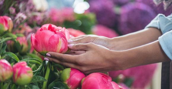 Karantino padariniai: floristai meta gėles lauk, vietos ūkiai nuostolius gali pajusti artėjant Motinos dienai