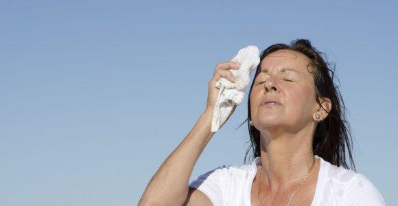 Kaip atsivėsinti namus ir kūną be oro kondicionieriaus?