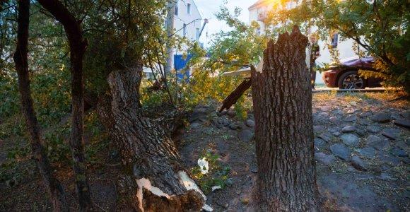 Orų padariniai: išvartyti medžiai, be elektros buvo likę 100 000 žmonių