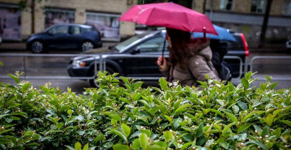 Savaitgalio orų prognozė: silpnas lietus lydės rinkimų dieną
