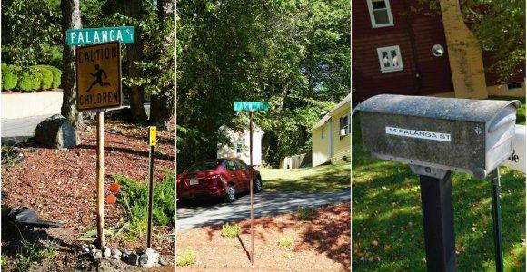 """""""Tikslas – Amerika"""". Birutės, Palangos gatvės ir kiti malonūs lietuviški atradimai JAV"""