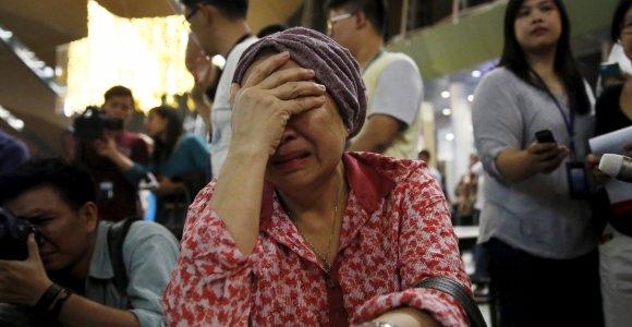 Haga atmetė Maskvos pasiūlymą dėl MH17 katastrofos įtariamųjų baudžiamojo persekiojimo