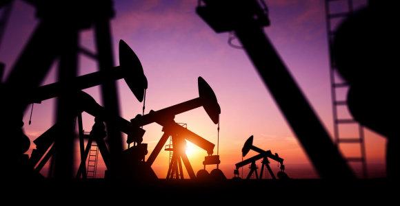 OPEC lapkritį išgavo mažiau naftos