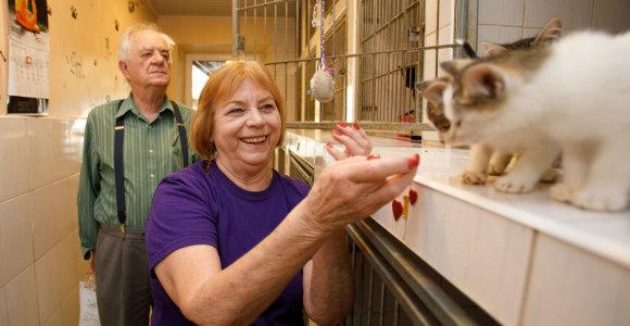 Amerikos profesorės savanorystė gyvūnų prieglaudoje