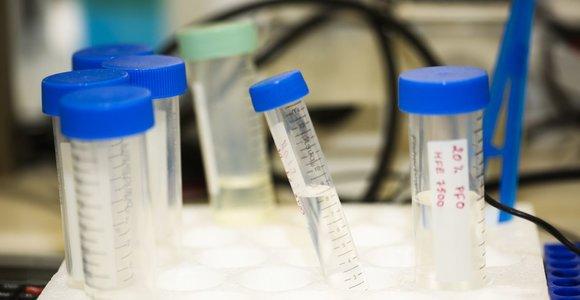 V.Bumelis steigia Molekulinės biotechnologijos centrą