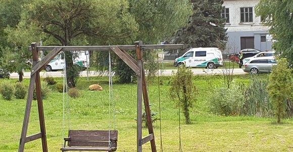 """Žudiko paieškos: keliose Kauno vietose – policijos """"voratinklis"""""""