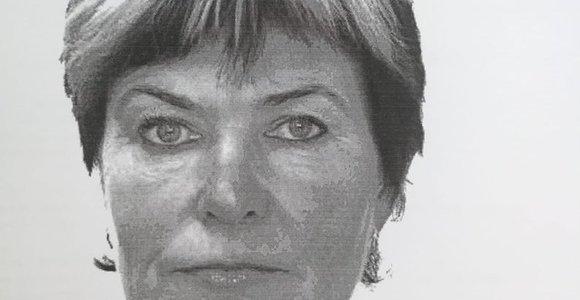 Drąsučiuose dingo V.Pyragienė: violetinių ir baltų plaukų moteris išvyko VW su raudonu buferiu