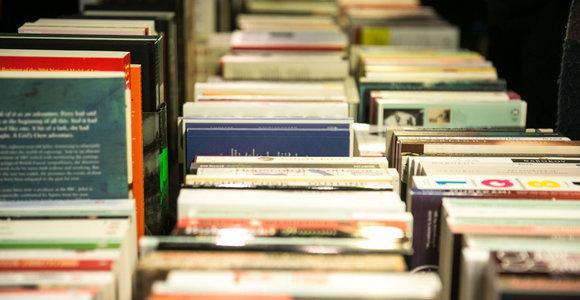Ko laukti skaitytojams: dėmesio vertos knygos, kurios bus išleistos šiemet