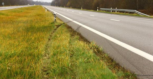 Panevėžio rajone automobilio nesuvaldęs latvis rėžėsi į atitvarus
