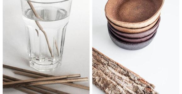 Ekodizainas Lietuvoje: kai gėrimų šiaudeliai užauga pelkėje, o indai – miške