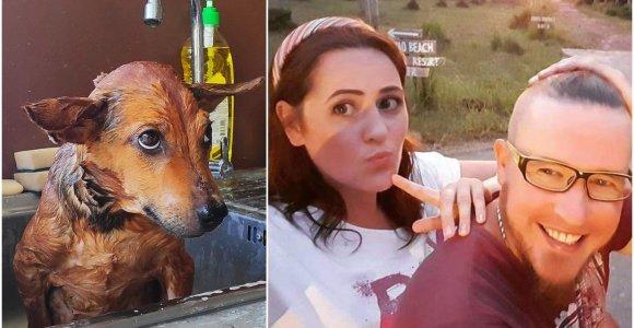Rasa ir Mantas Tailande rūpinasi beglobiais šunimis: turime jų 15, jei susirinktume visus, būtų 1000