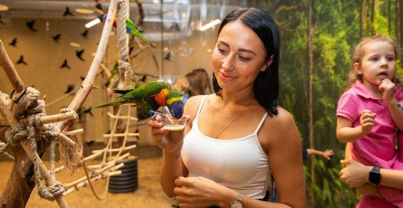 Zoologijos sodo gimtadienyje žinomos mamos grožėjosi retomis gyvūnų rūšimis