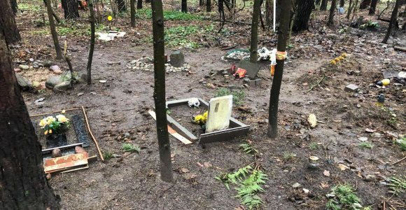 Nelegalios gyvūnų kapinės Vilniaus Karoliniškėse nenyksta: gaišenas iškasa laukiniai gyvūnai