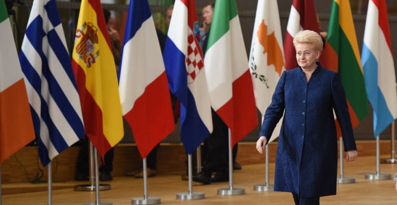 D.Grybauskaitė pasigenda konkretumo siūlant sudaryti euro zonos biudžetą