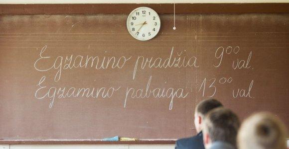 P.Gudynas: norint gerai išlaikyti egzaminus, formalių žinių nepakanka