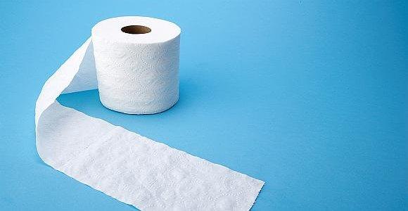 Ką naudojo žmonės, kol nebuvo išrastas tualetinis popierius?