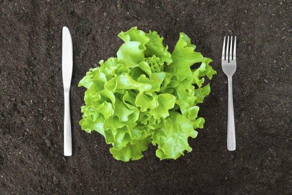 """""""Shutterstock"""" nuotr./Ekologiškas maistas"""