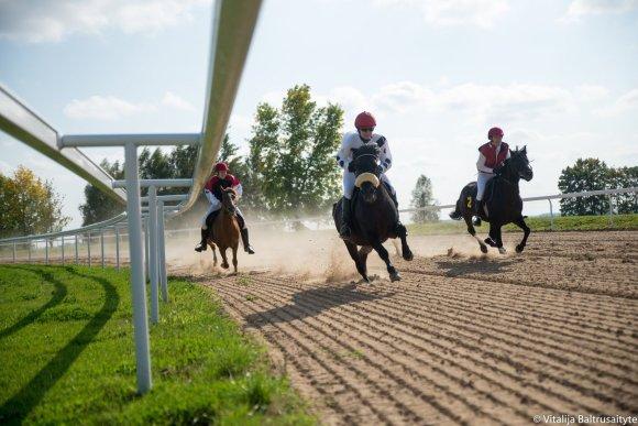 Vitalija Baltrušaitytė nuotr./Žirgų lenktynės Raseinių hipodrome