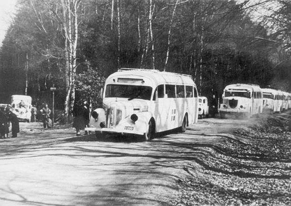 Wikipedia.org nuotr./Švedijos Raudonojo Kryžiaus baltieji autobusai