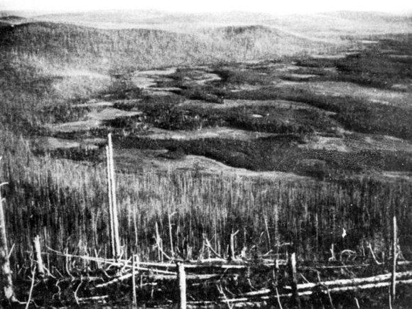 L.Kuliko darytoje nuotraukoje – pelkėta, tarp medžių išvartų įsiterpusi žemuma – spėjamas katastrofos epicentras./ Iliustracijos šaltinis: Lietuvos etnokosmologijos muziejus.