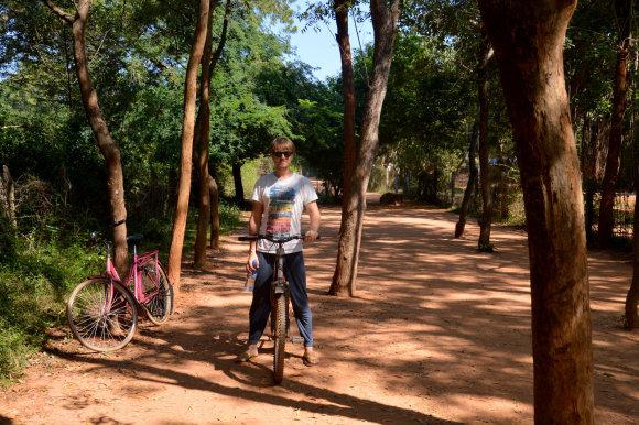 Po Aurovilį važinėjome senutėliais dviračiais