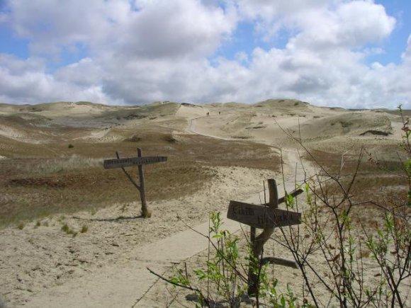 Lithuania.travel.lt nuotr./Naglių gamtos rezervatas