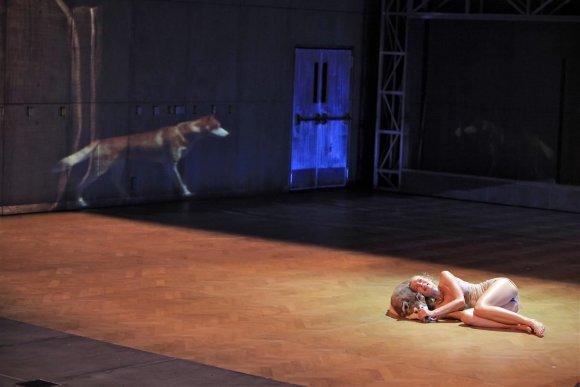 """""""Nowy Teatr"""" nuotr./Scena iš """"Nowy Teatr"""" spektaklio """"Apokalipsė"""""""