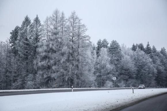 Juliaus Kalinsko / 15min nuotr./Žiema Verkių regioniniame parke