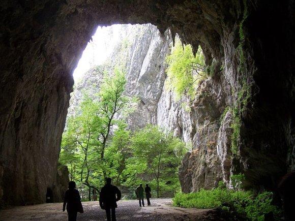 Wikimedia.org nuotr./Škocjano urvai