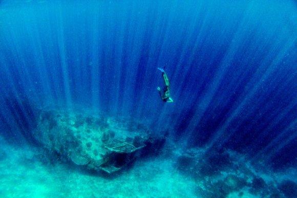 Bertos Tilmantaitės nuotr./Lucas neria prie nuskendusio karinio japonų laivo Indonezijoje