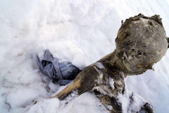 """AFP/""""Scanpix"""" nuotr./Rastos mumijos Meksikoje"""